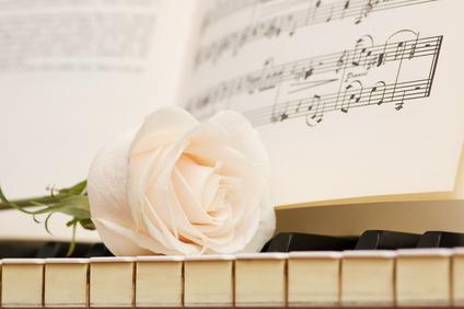 Romantic concept - white rose on piano keys
