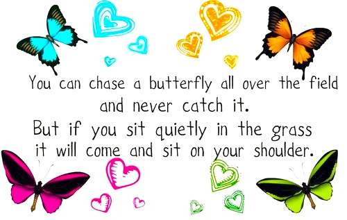 quiet butterfly quote